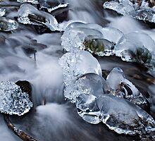 Winter at Wahkeena Falls by TeresaB