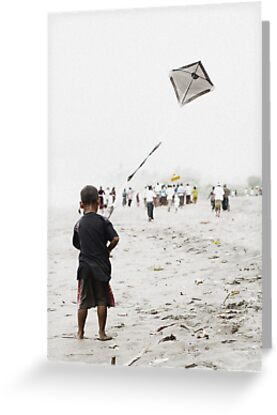 Beach Flight by wellman