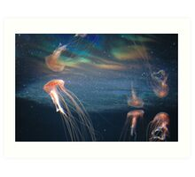 The Berlin Zoo - Jelly Fish Art Print