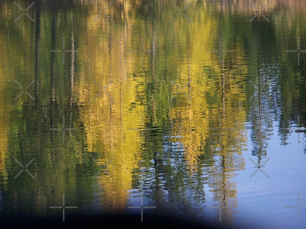 Golden Reflections   by Betty  Town Duncan