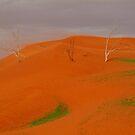 Desert Storm,Simpson Desert Australia by Joe Mortelliti
