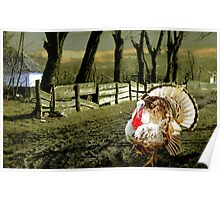 Country Turkey  Poster