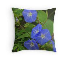 Beautiful Blue Throw Pillow