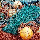 Fisherman's network by Arie Koene