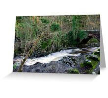 White Water - West Burton Greeting Card