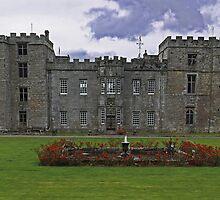 Chillingham Mansion/Castle by Ryan Davison Crisp