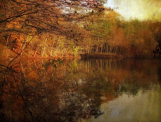Painterly Pond by Jessica Jenney
