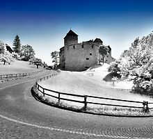 The Castle of Lichtenstein  by Mario Curcio