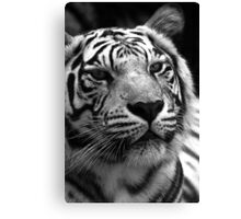 Ivory in black and white  Canvas Print