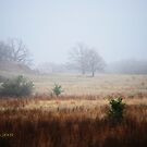 North Texas by Pat Moore