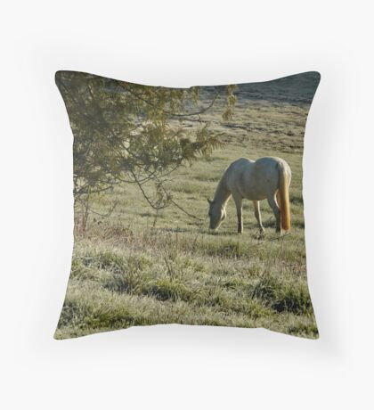 Chilly Breakfast Throw Pillow