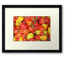 yellow, orange and red mini peppers at a food market Framed Print