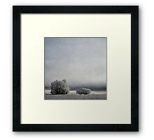 Two Trees in Frost Framed Print