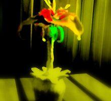 Streatam rose 3 by Neil Chapman
