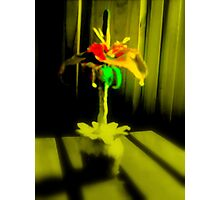 Streatam rose 3 Photographic Print