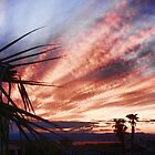 Another Havasu Sunset by tvlgoddess