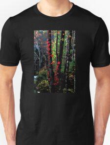 Autumn in New York Unisex T-Shirt