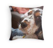 Dillon The Dog Throw Pillow