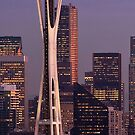 Seattle's Space Needle at Christmas Time  by Barb White