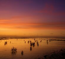 waddensea by JurrPhotography