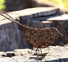 Wire Bird by John Vandeven