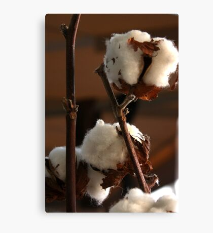 Cotton Canvas Print