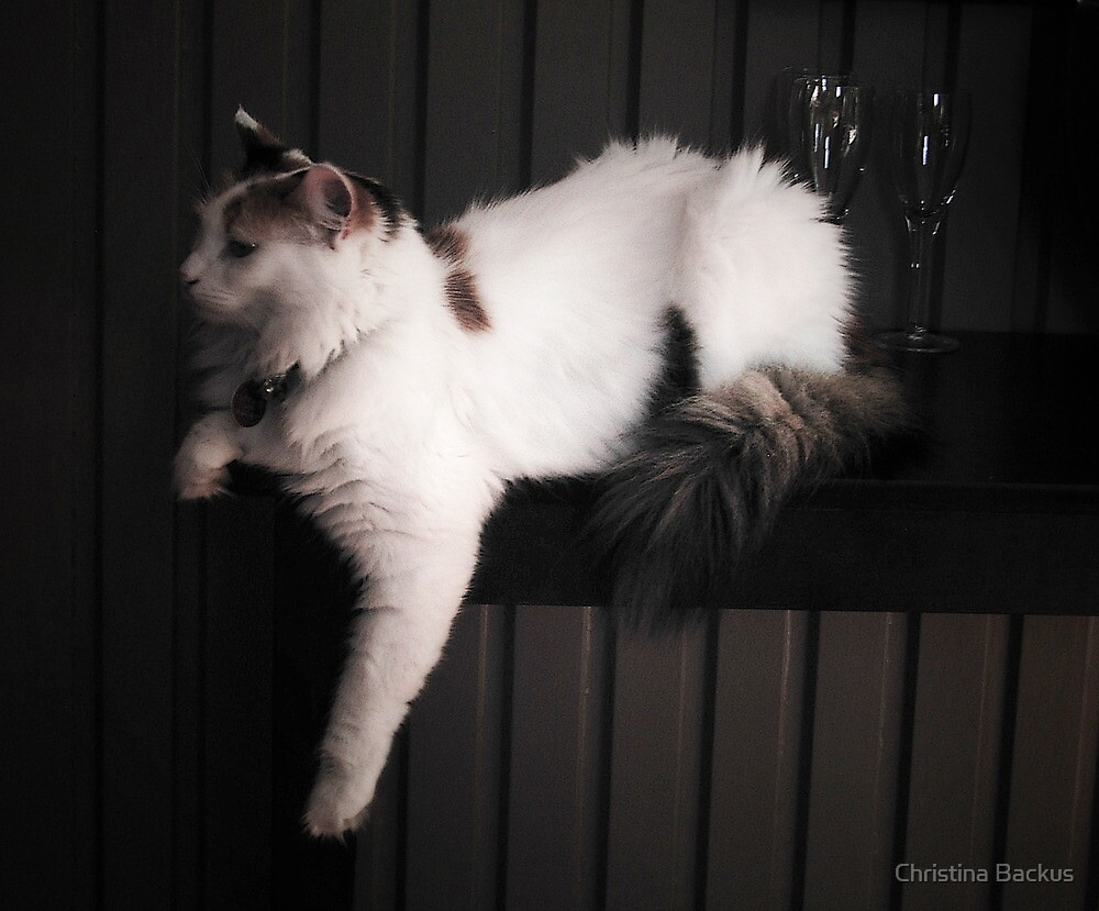 Pia relaxing by Christina Backus