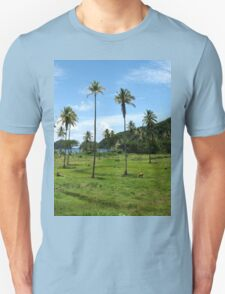 an incredible Fiji
