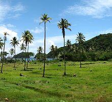 an incredible Fiji landscape by beautifulscenes