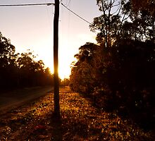 Power Pole Sunset - Nowra by Justin Showell