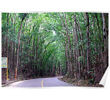 Blind Curve of Mahogany -Philippines Poster