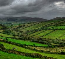 Dingle Peninsula by Stewart Lines