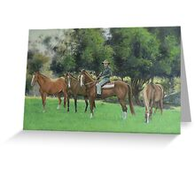 Steve & His Stockhorses Greeting Card