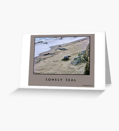 Lonely Seal Greeting Card