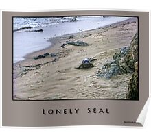 Lonely Seal Poster