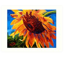 Sunflower in the Sunlight Art Print