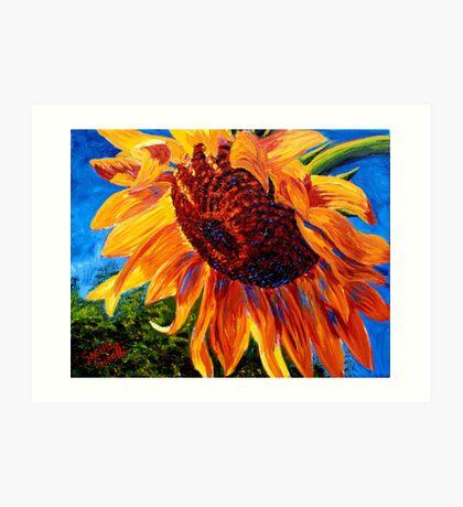 Sunflower in the Sunlight Art Print