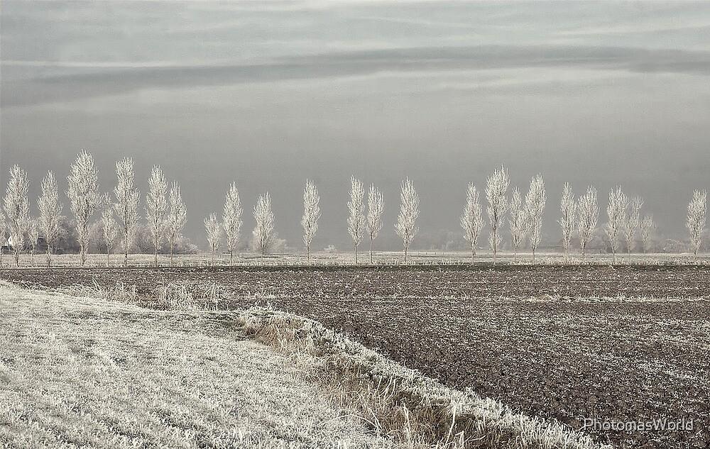 Freezing silence by PhotomasWorld