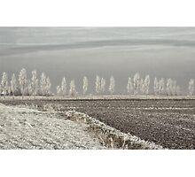 Freezing silence Photographic Print