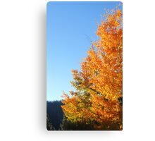 Color Genius Canvas Print