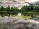 The Chinese Bridge - Painshill Park - HDR by Colin J Williams Photography