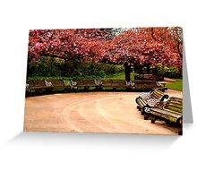 Nature Blossom.  Greeting Card