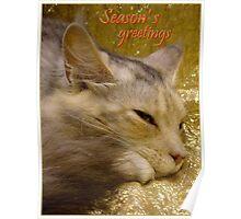 Season's greetings card Poster