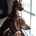 Waiting for Dad to come home by Sherri Fink