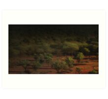Quilpie Plains Sunrise © Vicki Ferrari Photography Art Print