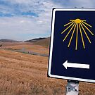 On the road to Compostela by Thierry Beauvir