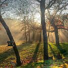 Sunday Morning at Rock Hollow Lodge - - HDR by Dennis Jones - CameraView