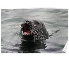 Svolværs sjøløven - The sea lion of Svolvær. Poster