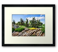 Earthtones, Greens and Yellows - Impressions of a Rock Garden Framed Print