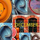 December by Abba Richman